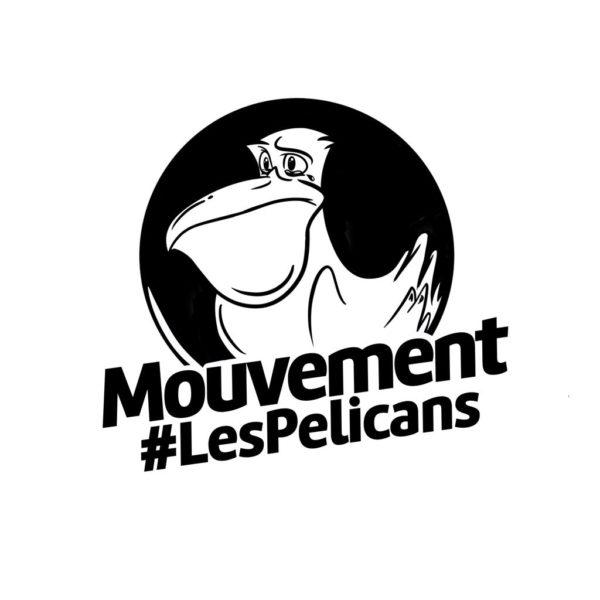 Logo Les Pélicans